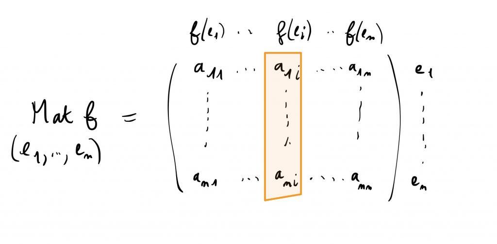La matrice d'une application linéaire